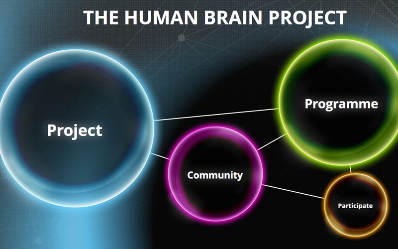 The Human Brain Project